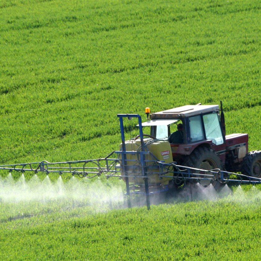 Fertilizarea după ureche și creșterea vânzărilor de ingrășăminte; Gestionarea eficientă a nutrienților necesită cuantificarea necesităților nutrienților