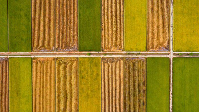 Instrumente digitale în agricultură