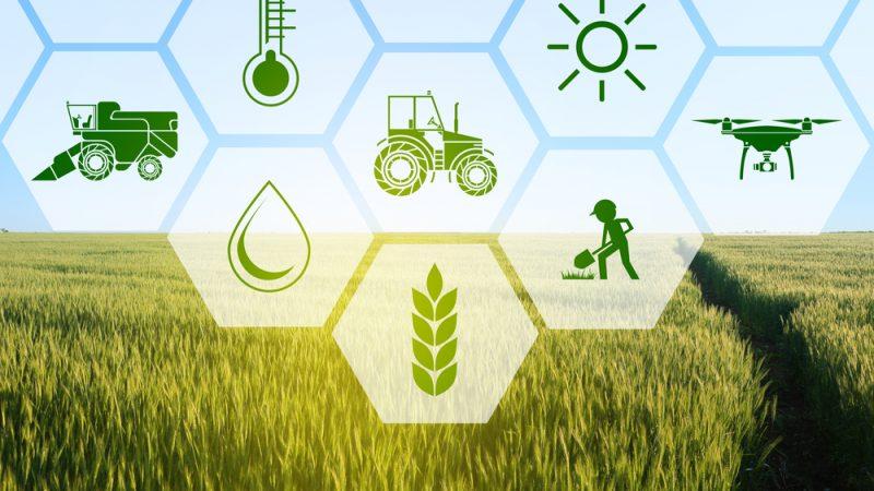 Agrotehnologia se raspandeste ca un incendiu; Astăzi avem tractoare aproape autonome, care nu mai au nevoie de șoferi; agricultură de precizie, stiri agricole, subventii apia