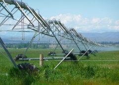 """România, în pericol să rămână fără banii de la UE pentru sistemele de irigaţii. Dan Barna: """"Trebuie refăcut proiectul PNRR"""". Stiri agricole"""