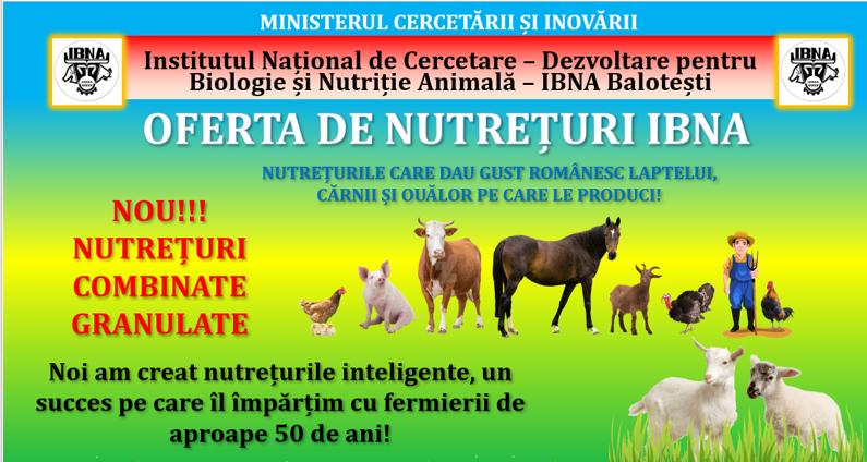 Efectul complementar al seminţelor de in şi şrotului de nucă - soluţie nutriţională alternativă pentru purcei în criza de înţărcare