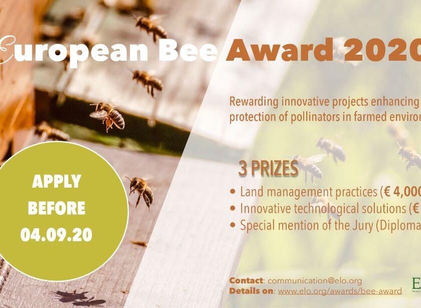 Si tu poți participa la European Bee Award 2020; Aplicați până la 4 septembrie 2020, trimițând formularul atasat; stiri agricole