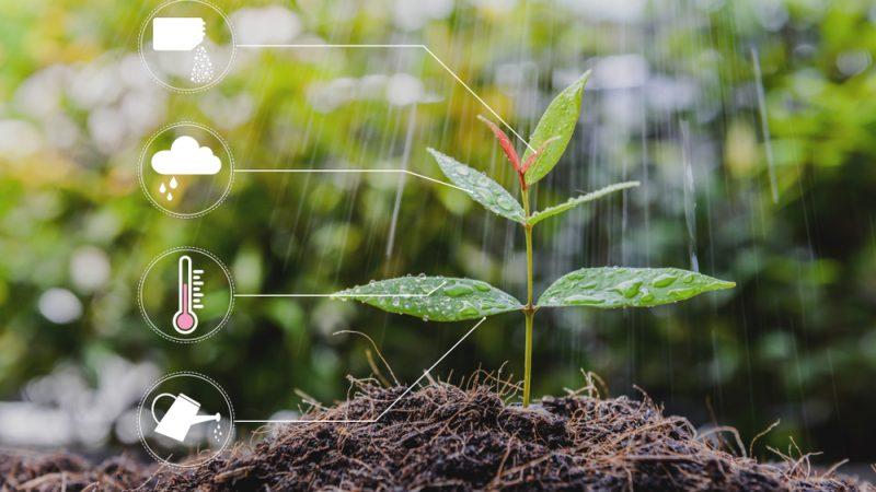 """Fermierii au nevoie de acces la cele mai noi instrumente și tehnologii; Digitalizarea """"factor cheie"""" pentru fermieri; stiri agricole"""