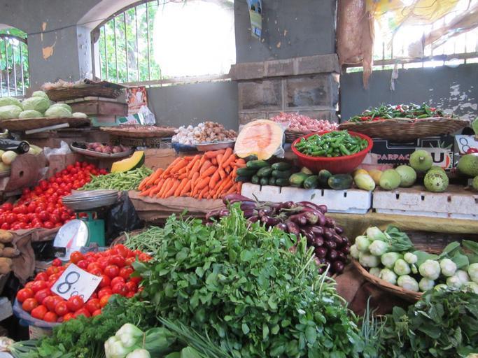 Soluții pentru producătorii agricoli din fermele mici și mijlocii; agricultorii, fermierii, dacă sunt ajutați. continuă să producă; stiri agricole