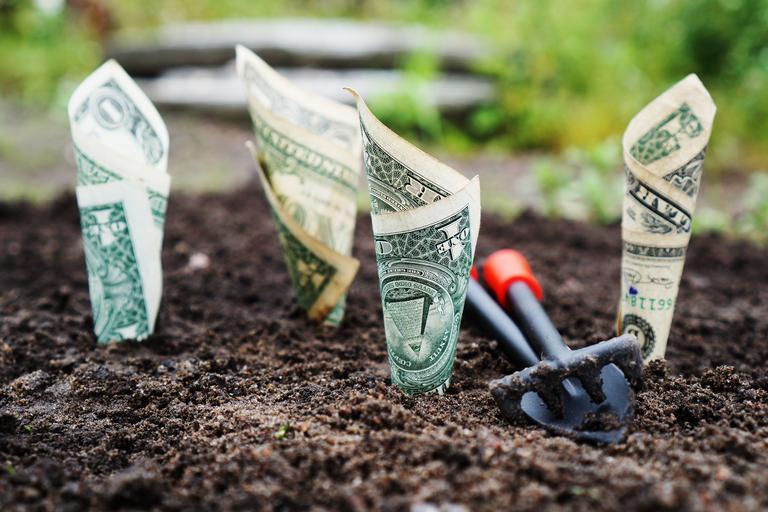 7.000 euro/fermier - ajutoare financiare; Regulamentul de acordare a ajutoarelor financiare pentru fermieri a fost adoptat; stiri agricole