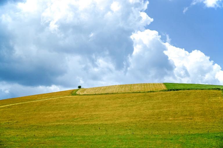 România poate stabili conținutul propriilor eco-scheme și câți bani le va aloca fermierilor; fermierii vor avea libertatea de a participa sau nu la acestea.