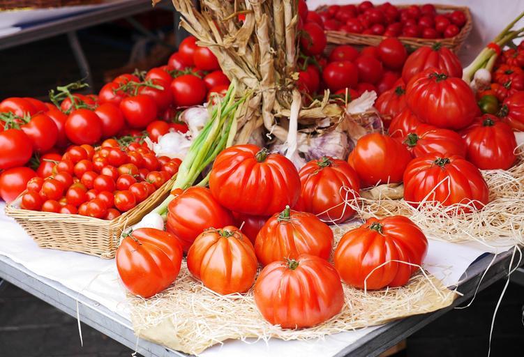 De ce crede UE in fermele mici si mijlocii? Strategia F2F va avea un impact asupra fermierilor și a agriculturii în patru moduri. stiri agricole