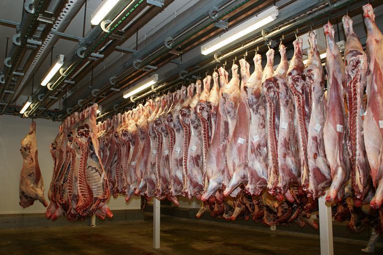 Reorganizarea sistemului naţional de clasificare a carcaselor de bovine, porcine şi ovine; proiect de act normativ supus dezbaterii publice; stiri agricole