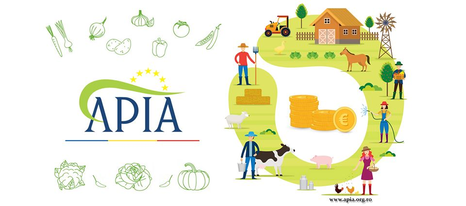 Cuantumul per hectar al plăților directe anunțat de MADR pentru anul de cerere 2020; Începând cu data de 16 octombrie 2020, APIA poate acorda plăţi în avans