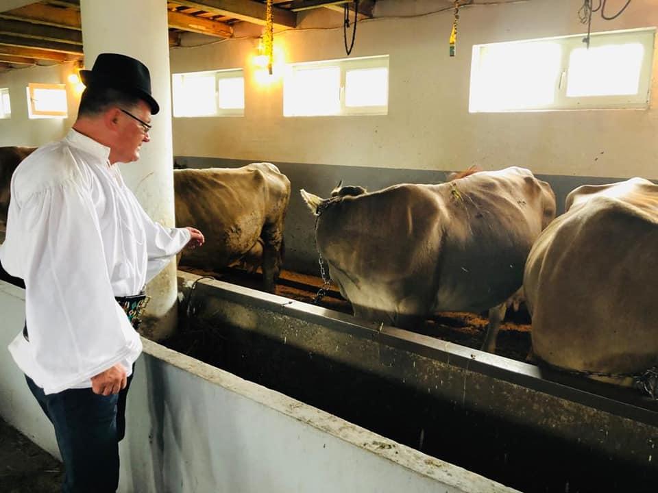 Ferma de familie o soluția realistă pentru agricultură; ferma de familie cu vaci de lapte din rasa Brună de Maramureș, în comuna Giulești, stiri agricole