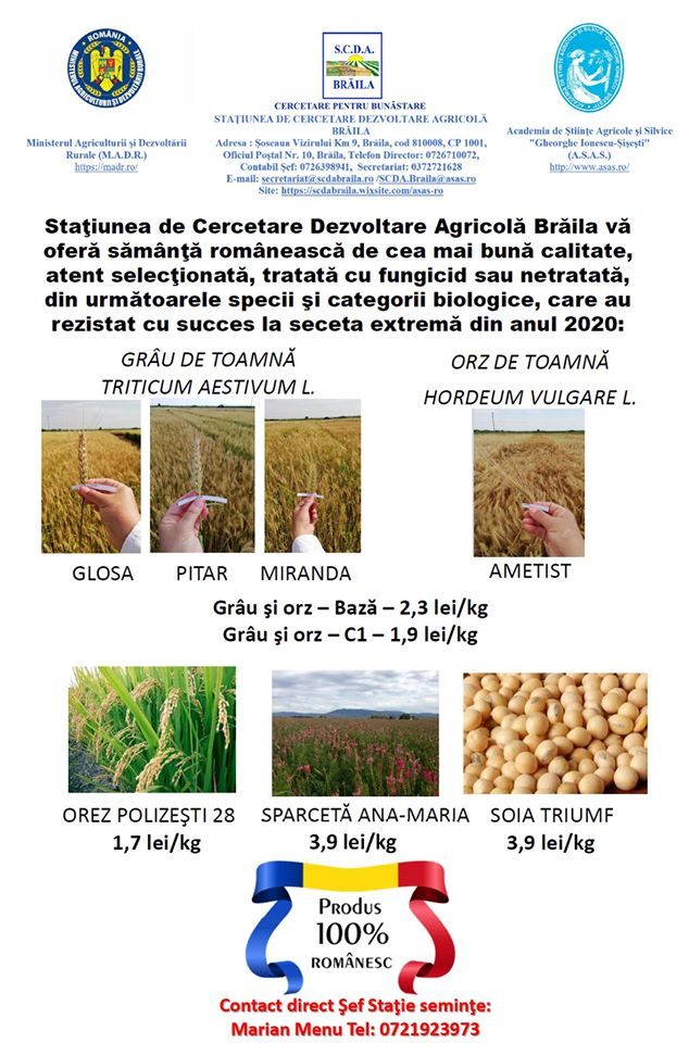 La SCDA Braila se lucreaza intensiv pentru a va oferi samanta de cea mai buna calitate; crestere semnificativa a energiei germinative; stiri agricole