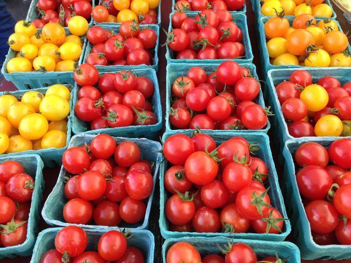 Toți fermierii olteni au primit subvenția în Programul Tomata. Peste 57 de milioane de lei le-au intrat în conturi; stiri agricole