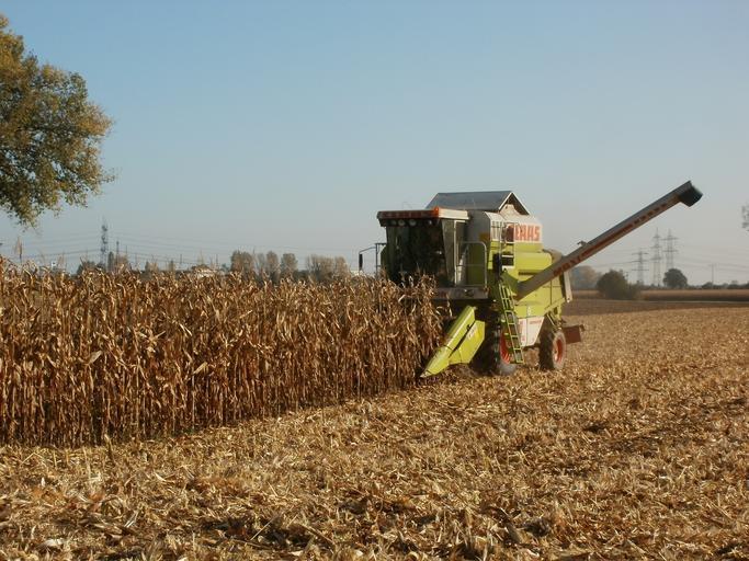 Ministrul Finantelor, Florin Cîţu: Agricultura - riscul cel mare privind evoluţia economiei României; România va evita recesiunea economică; stiri agricole