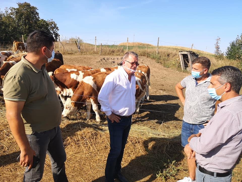 De mâine începe plata ajutorului acordat fermierilor afectaţi de secetă; Numărul cererilor depuse este de: 28.112; stiri agricole