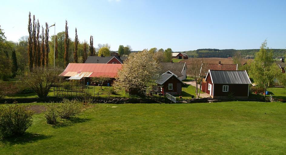 Definirea fermei de familie și a celei comerciale; Plan de dezvoltare privind agricultura 2021-2027, partea a IX-a; stiri agricole; Stefan Gheorghita