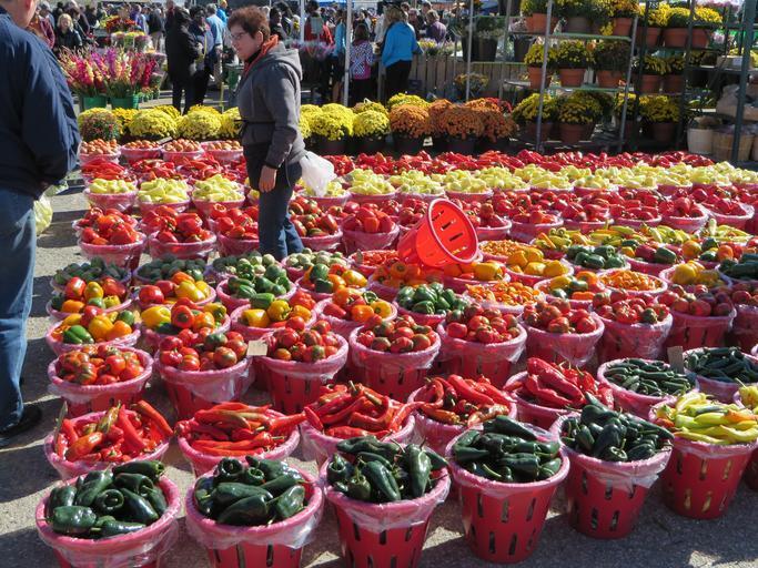 Peste 4.300 de operatori controlați în domeniul comercializării legumelor și fructelor proaspete; un număr de 144 amenzi cu o valoare totală de 222.400 lei