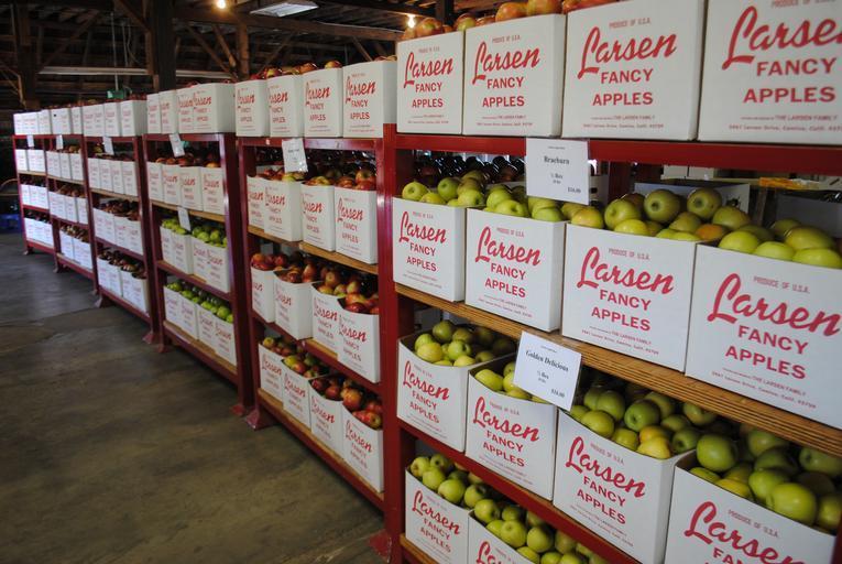 Timisul va avea primul centru de colectare legume-fructe; costul unui astfel de centru se ridica la 700.000-900.000 de euro; stiri agricole