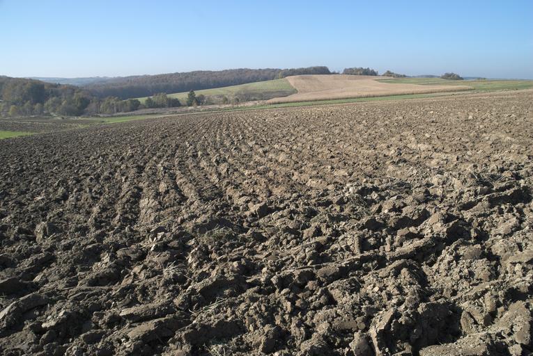Nu-ţi dau subvenţia decât dacă îmi demonstrezi că tu lucrezi pământul; Mulţi fermieri lucrează şi suprafeţele altora, care depun cererile unice de plată