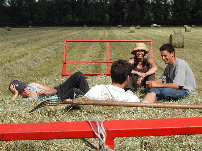 Ce părere au tinerii fermieri despre reforma PAC? Nimic nu se schimba pentru tinerii fermieri; Alessia Musumarra, secretar general al CEJA; stiri agricole