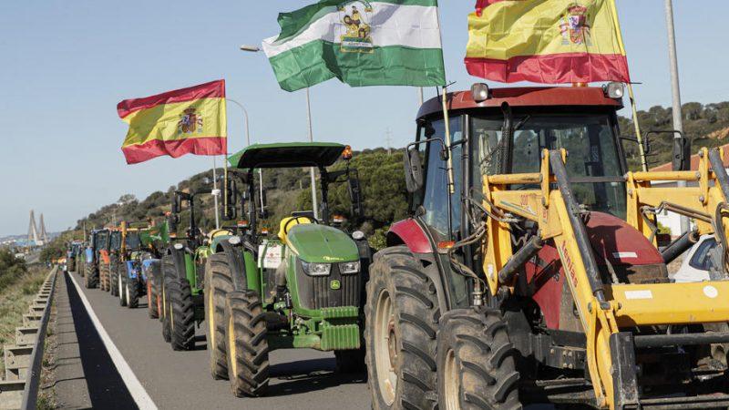 """Acordul UE-Mercosur dezavantajează fermierii; Pentru unii, acordul nu aduce """"aproape niciun avantaj""""; Interese din afara sectorului agricol; stiri agricole"""