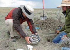 Importanța analizelor fizico-chimice ale solului; Nu veți pierde bani pe îngrășăminte inutile dacă se cunoaște exact tipul și cantitatea de îngrășăminte;