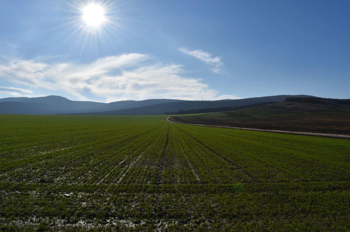 Alianța pentru Agricultură și Cooperare protestează față de nepăsarea Guvernului! scrisoare de protest adresată reprezentanților Guvernului; stiri agricole