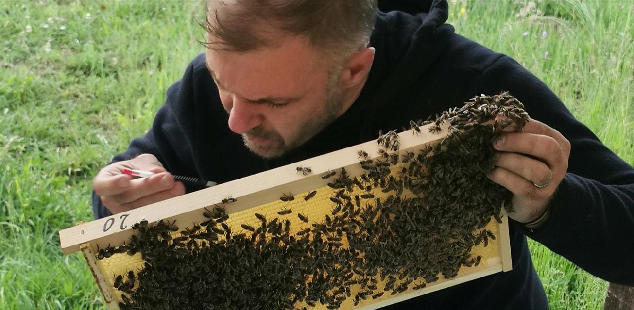 Faceți apicultură din dragoste și cu dragoste pentru aceste ființe și rezultatele nu vor întârzia să apară; Marian Stuparul Oltean; stiri agricole