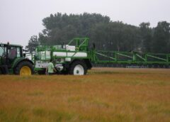 """5 lucruri despre pesticide pe care ar trebui să le bage la cap """"ecologiștii"""""""