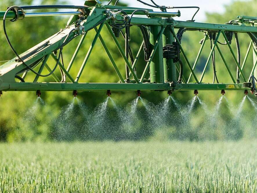 Protecția culturilor: alternative la produsele agrochimice. protecția integrată a culturilor combină proceduri mecanico-fizice, biologice și chimice. Stiri