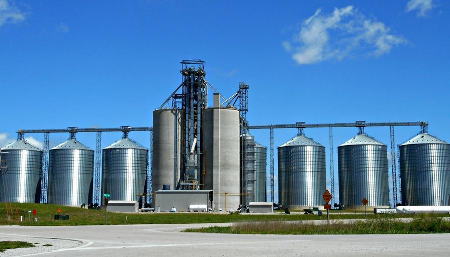 Cooperativa Argeş Biosud – investiție într-un siloz de 40.000 de tone. 43 de membri în cooperativă, care lucrează 22.000 de hectare de teren. Stiri agricole