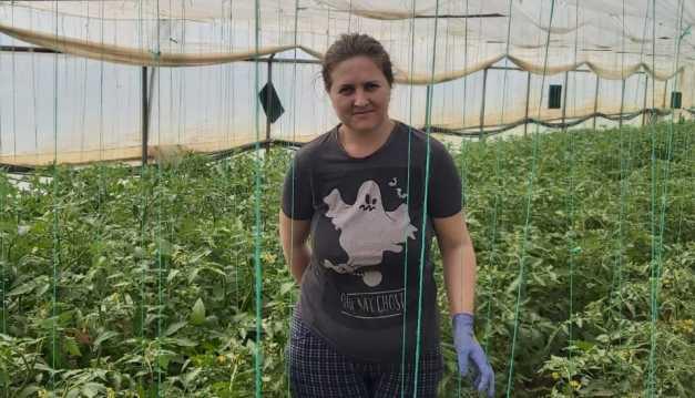 Oltenii interzişi într-o piaţă din Banat - prioritate au producătorii locali; Mai mulţi producători de legume din Olt îl acuză pe primarul din Lugoj; stiri