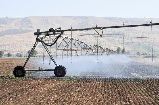 De ce Israelul conduce tehnologia agricolă globală. Sprijin comunitar pentru un climat agtech fructuos. Kibbutz – cooperare – inovație. Stiri agricole