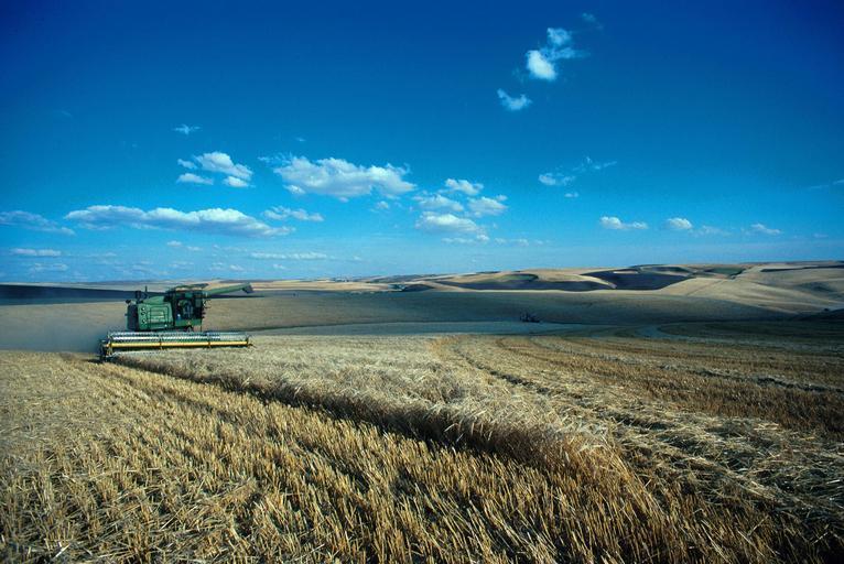 Acord cu privire la reforma agricolă. Parlamentul UE, Comisia Europeană și Consiliul de Miniștri au ajuns aseară la un acord. Stiri agricole