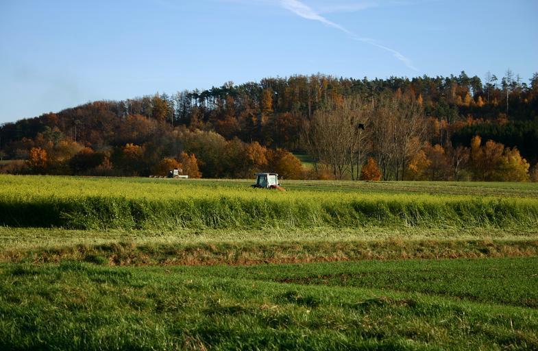 Veniturile suplimentare obținute din activități nonagricole sunt vitale pentru fermieri. Fermierii romani nu au aproape niciun venit suplimentar. Stiri agro