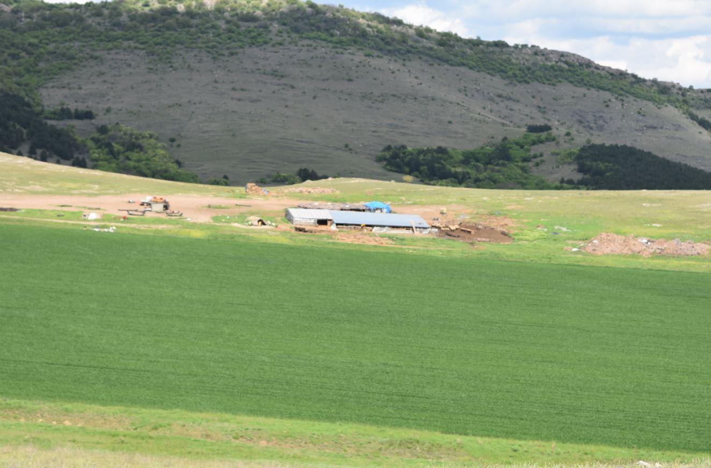 Pajiştile din zonele limitrofe Munţilor Măcin afectate de suprapăşunat. Un studiu realizat în Cerna, Greci, Hamcearca, Jijila şi Măcin. Stiri agricole
