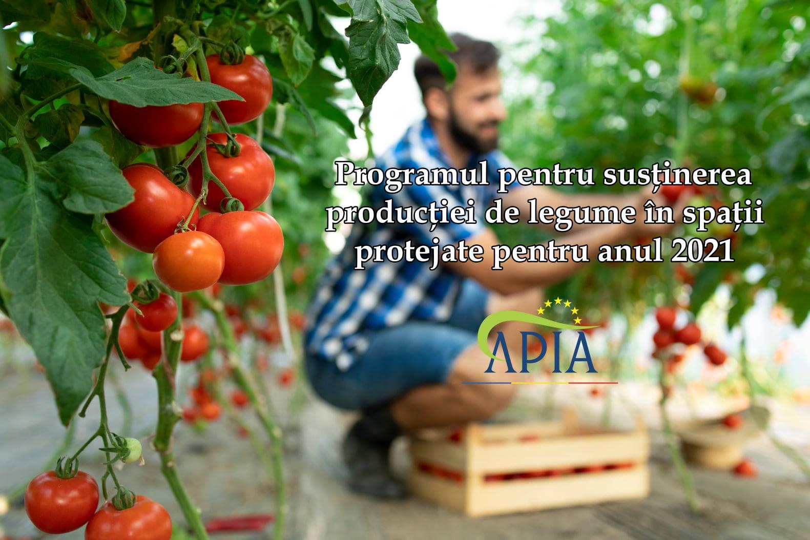 Depuneți cererea de înscriere în Programul pentru susținerea producției de legume în spații protejate. 11.121 cereri depuse. Stiri agricole