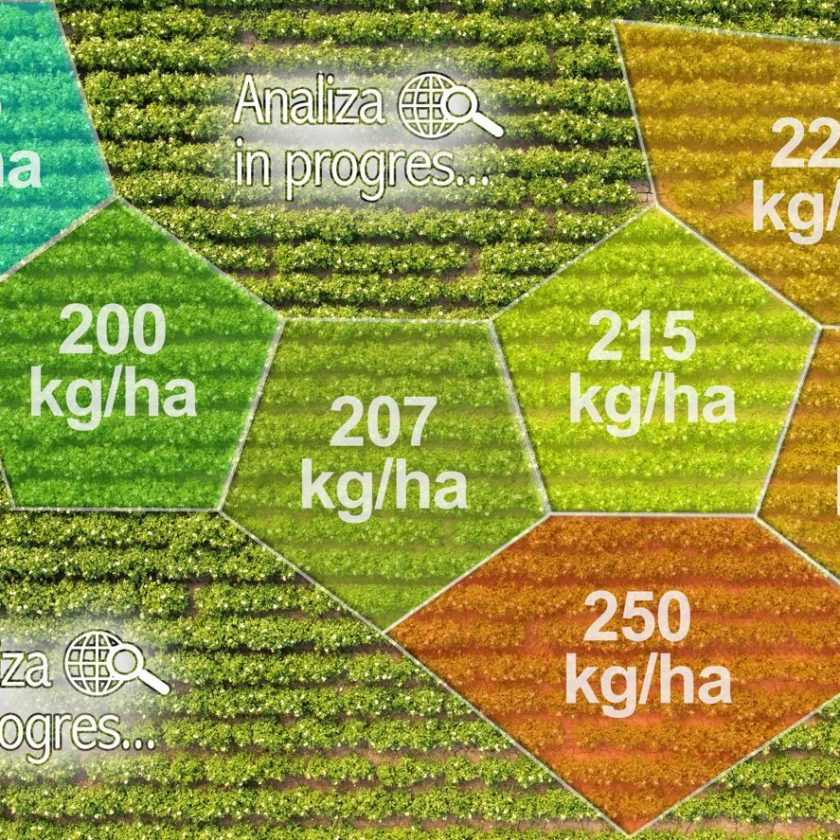 Cum vor fi influențate subvențiile de către eco-scheme? Plățile directe pe hectar se pot micșora cu cel puțin 48.875 euro. Stiri agricole