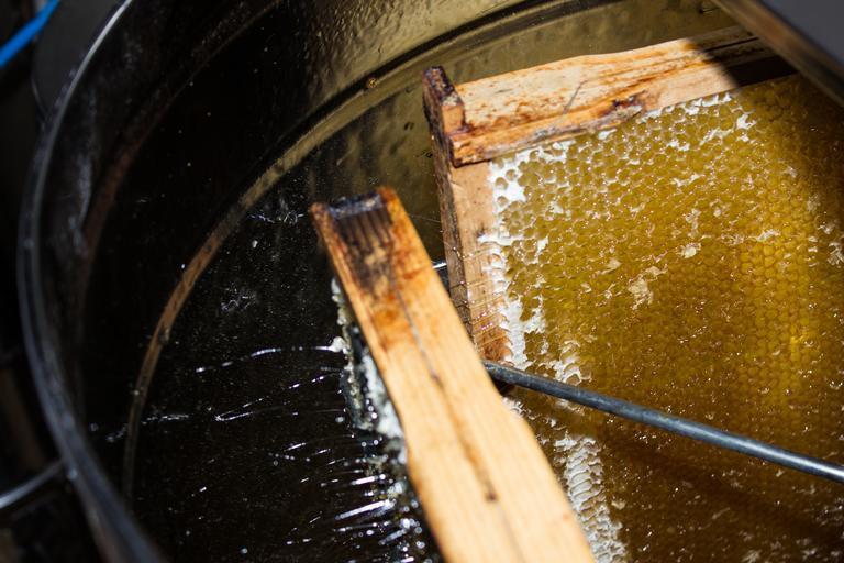 Apicultorii români primesc cel mai mic preț pe miere din UE. Românii nu au cum să știe dacă mierea lor vine de la o stupină sau de la un fabricant de sirop