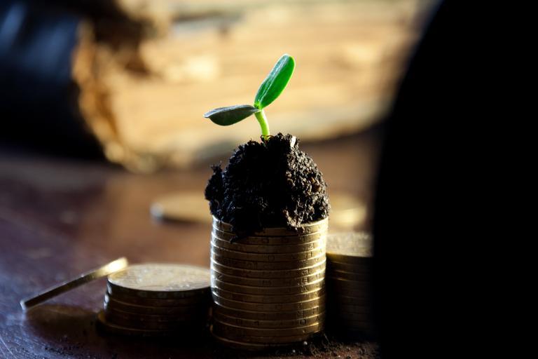 Acordați mai multe plăți directe și vom respecta ecoschemele. Fermierii sunt mai reticenți să aplice și să investească în ele. Stiri agricole