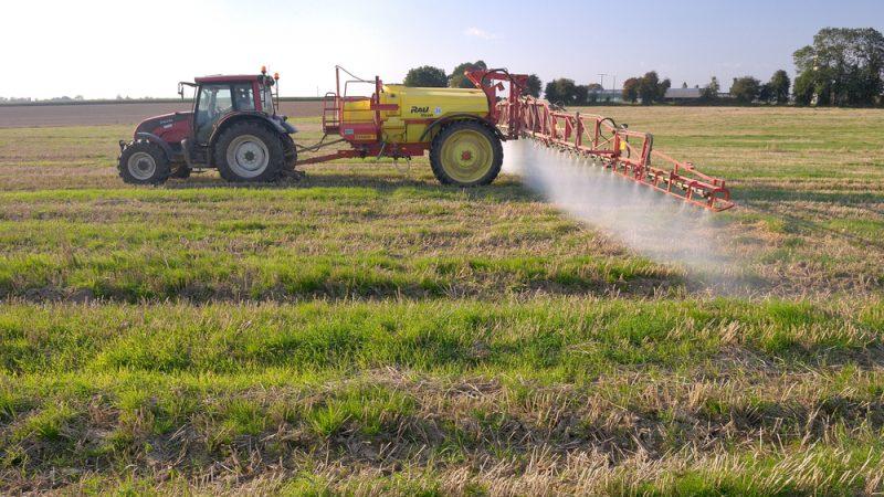 Eliminarea treptată a plăților directe PAC. Eliminarea plăților directe pe suprafață în următoarele două perioade de finanțare a PAC. Stiri agricole
