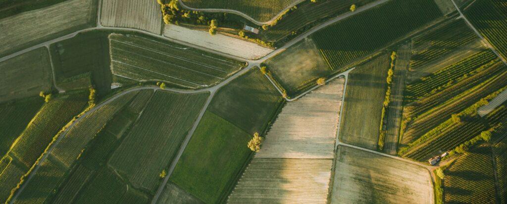 Locul unde combinăm tehnologia cu agricultura! Valorificăm tehnologiile pentru a spori randamentul prin utilizarea mai eficientă a inputurilor. Agrimasat