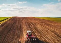 Fermierii vor pierde până la 30 la sută dacă se pune în aplicare Acordul Verde