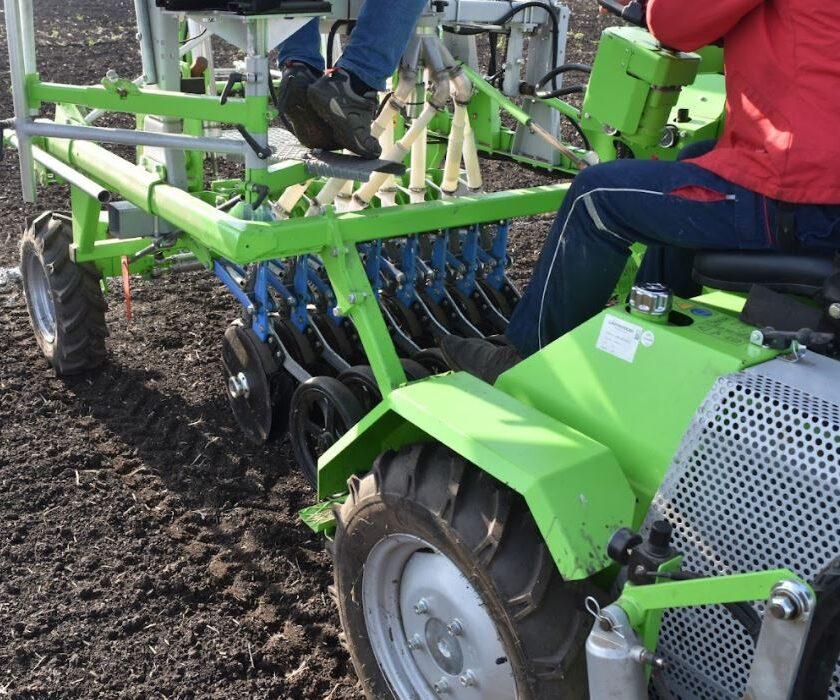 Îngrășămintele se scumpesc, semănăm grâul, cum fertilizăm? La fertilizarea cu azot a grâului se pot distinge 4 perioade. Stiri agricole